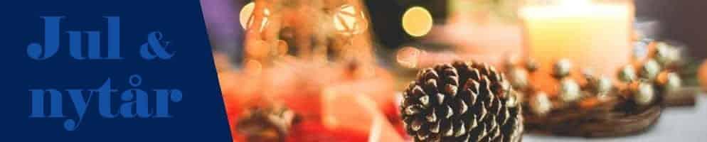 Julefrokost og Nytårsmenu 2020 i Fredericia